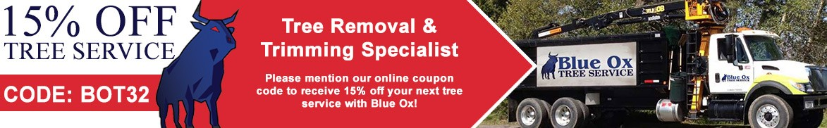 Blue Ox Coupon